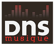 dns musique